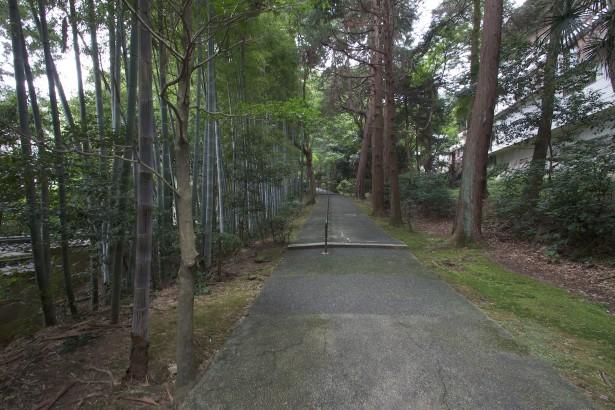 Auf dem Weg zum Chion-in Tempel.