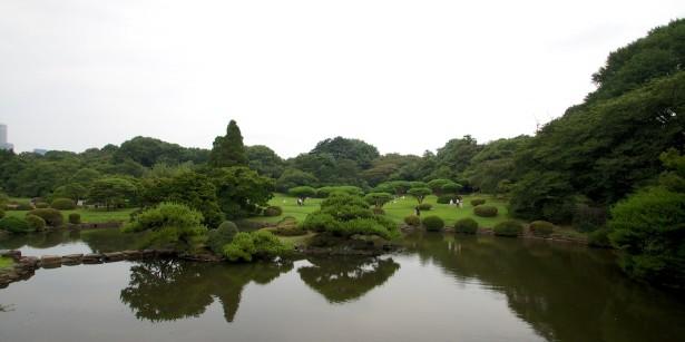 Im Shinjuku Gyoen Garten.