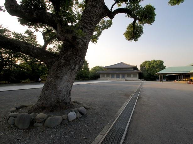 Beim Ikegami Honmon Schrein.