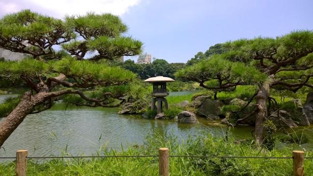 Im Kiyosumi Garten.